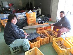 週に二回お互いの作業を手伝いあう西木さんと堀尾さん