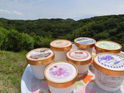 地元の業者と連携して製造する各種アイスクリーム