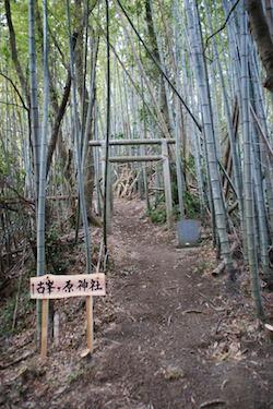 高鶴山登山コース