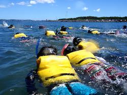 (2)沖ノ島スノーケリング体験