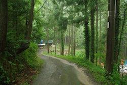 アートガーデン・コヅカへの山道