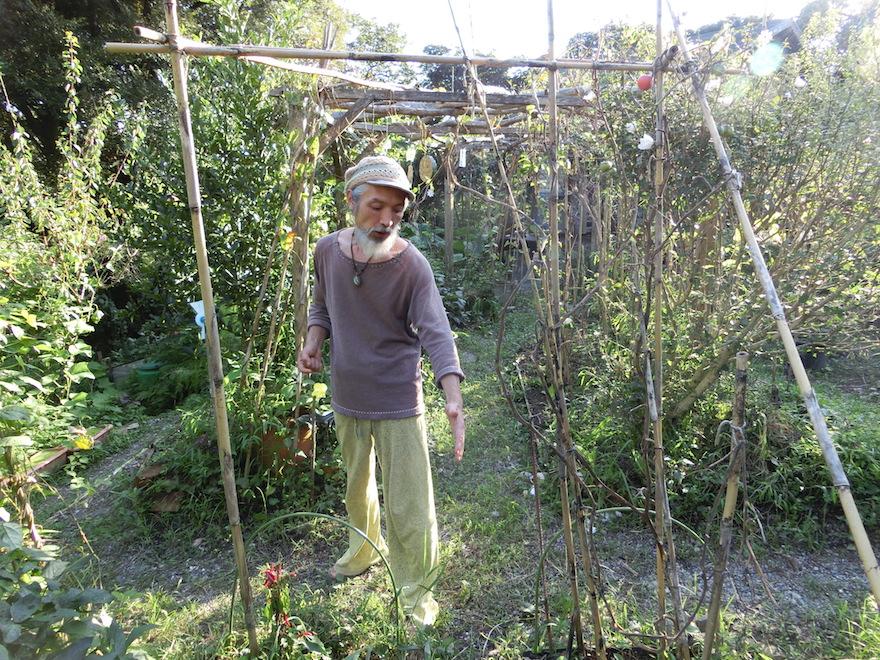 数多くの野菜や果樹が植えられている宮下さん宅の庭