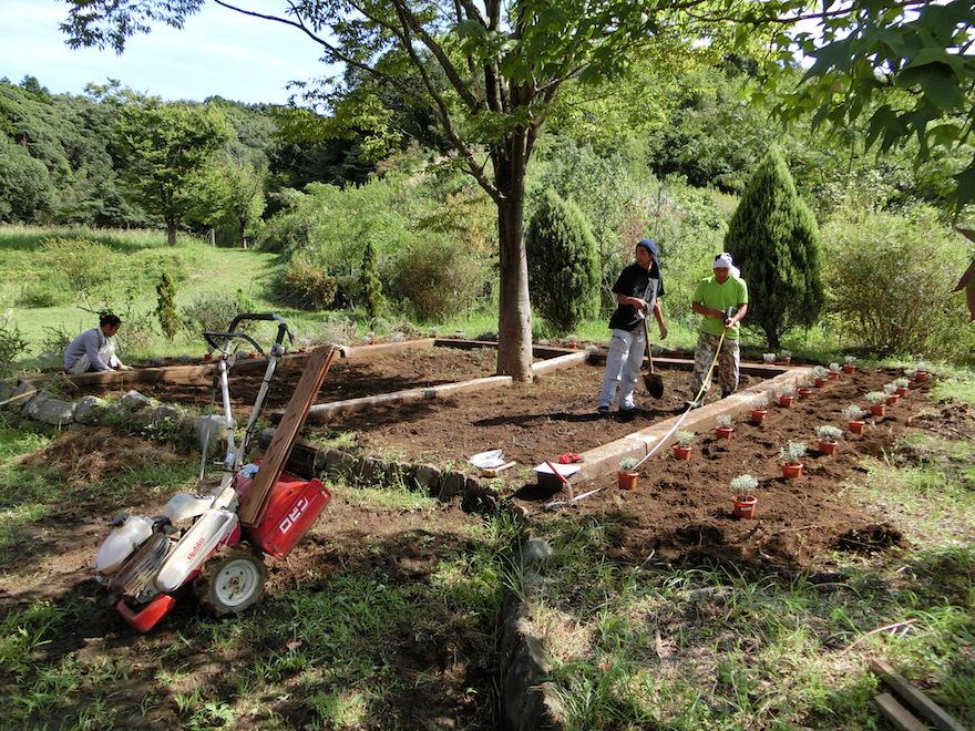 ガーデンにラベンダーを植栽する里山生活お助け隊