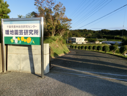 千葉県館山市にある暖地園芸研究所
