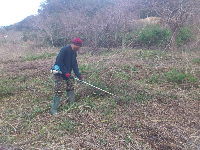 耕作放棄地を開墾して、畑や田んぼとしてパーマカルチャーを実践するムファウメさん
