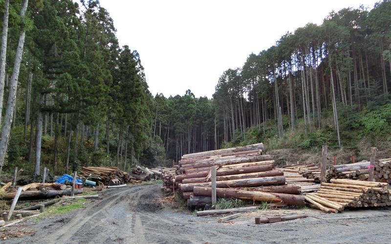 地域資源再生課による木質バイオマスエネルギー事業