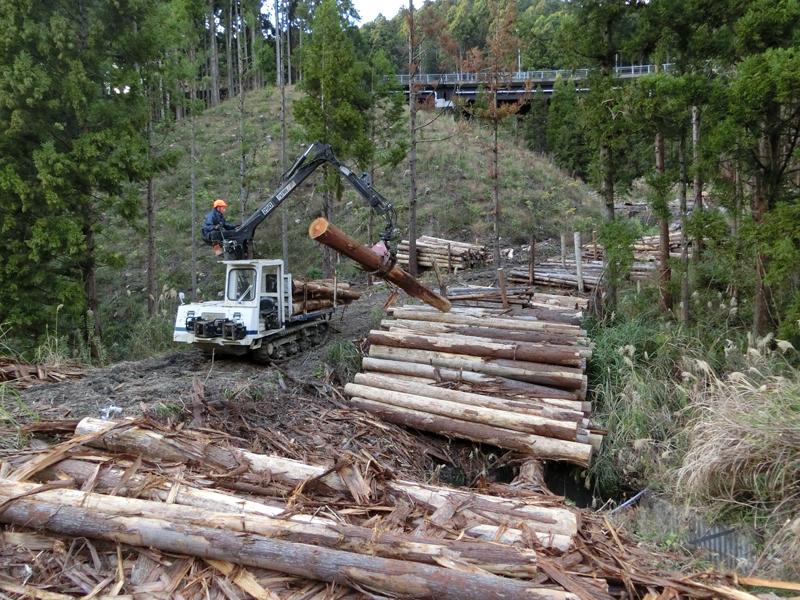 千葉県森林組合安房事業所による間伐材の搬出作業
