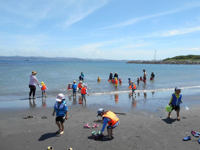 館山市の沖ノ島の海岸で遊ぶ「はっぴー」の子ども達(7月)