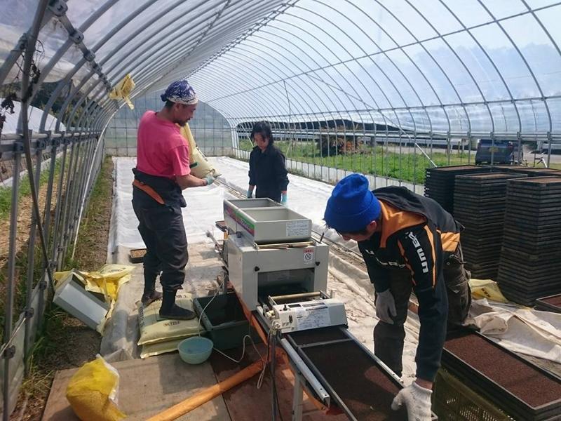 根岸さんに指導を受けながら2016年度に栽培する稲の種まきを行う研修生達