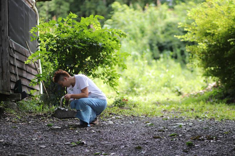 時間があくと、庭でドングリを拾うレミさん。何に使うかは、記事の後半で。