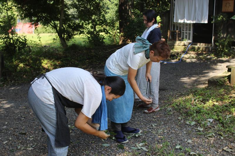 庭にほした麻縄で染めたものを乾かしながら、母たちは、何やら拾い始めます