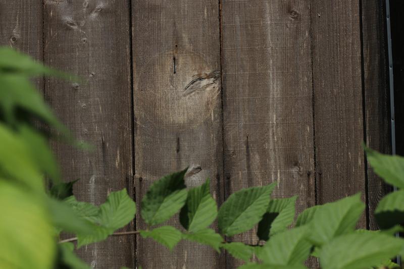 ドアにかすかな痕跡を残す、プレートのあと。