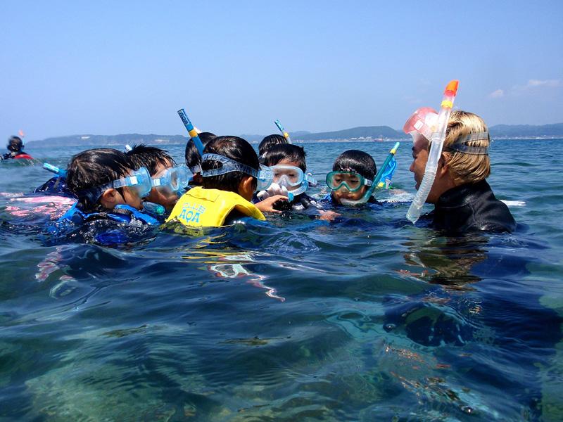 7月初旬~9月初旬に開催される沖ノ島・サンゴに出会えるスノーケリング体験プログラム