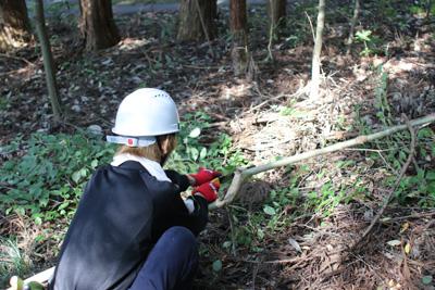 間伐が進むと空気もすっきりと変わってくるようでした。3年前の竜巻被害で倒木が残っているところも。