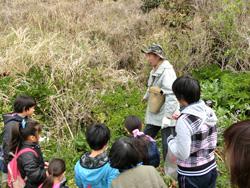 鈴木さんのガイドで浜辺の野草を蒐集する子ども達