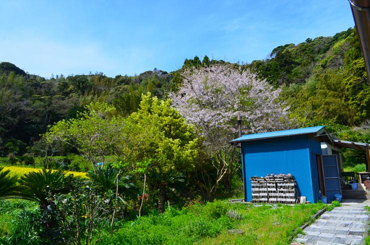 館山市の香(こうやつ)にある西山さんの自宅兼窯場  里山に囲まれているが、歩いて5分の距離に海がある