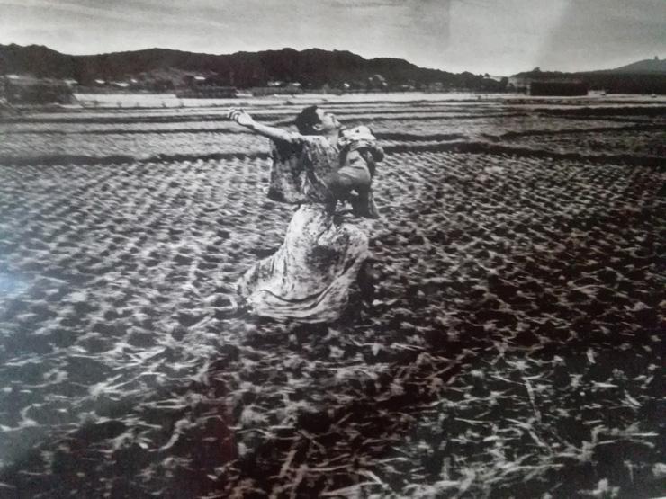 鎌鼬 作品37 細江英公 写真集「鎌鼬」より
