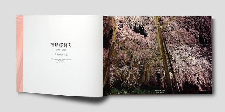 2012年から2016年の春に福島で撮影した桜の写真集『福島桜狩り』 全ての写真に放射能線量値を付記している