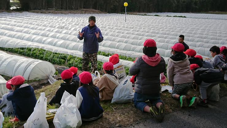 安西さんは毎年、地域内小学校の収穫体験を受け入れており、「かんべレタス」の歴史や美味しさの理由を伝えている