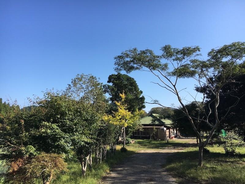 ph1_shitanaoi01