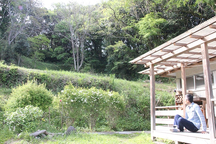 庭は小高い丘に連なっており、様々な植物や昆虫、動物が生きている